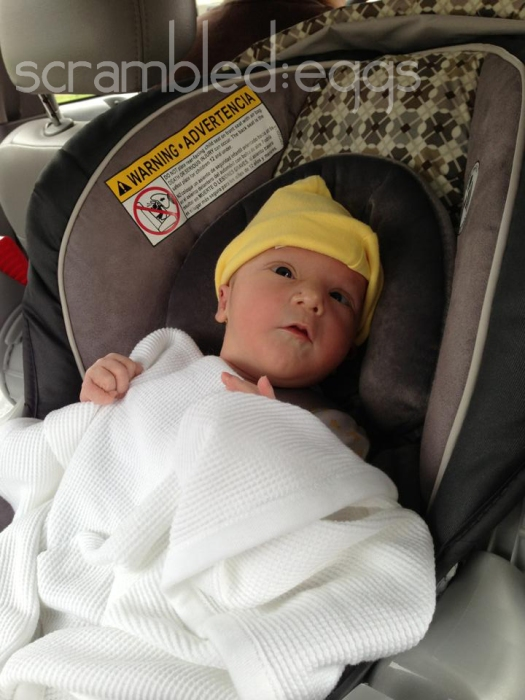 Heading home from the hospital! Sabine was alert and interested in the car ride.