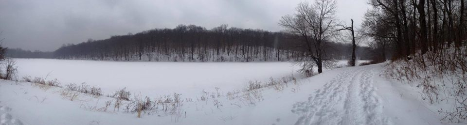 I have an adorable video of Sabine walking but cannot get it off my phone to save my life. Technology is not always my friend. So instead you will get photos from our snowy hike this weekend.