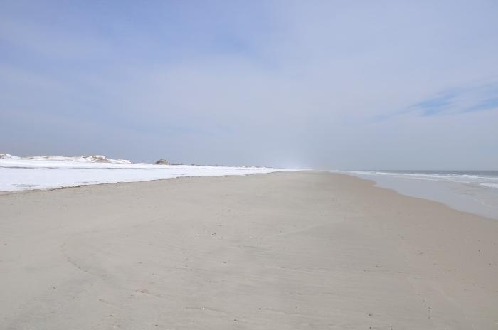 Snow. Sand. Surf.
